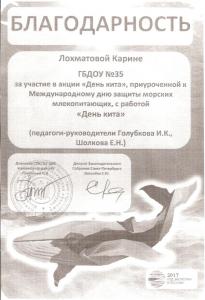 Голубкова,-Шолкова1