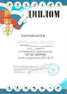 Шолкова1
