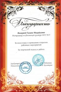 Волкова4
