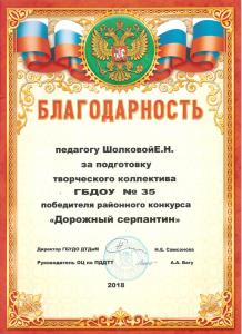 Шолкова4